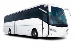 Coach 45